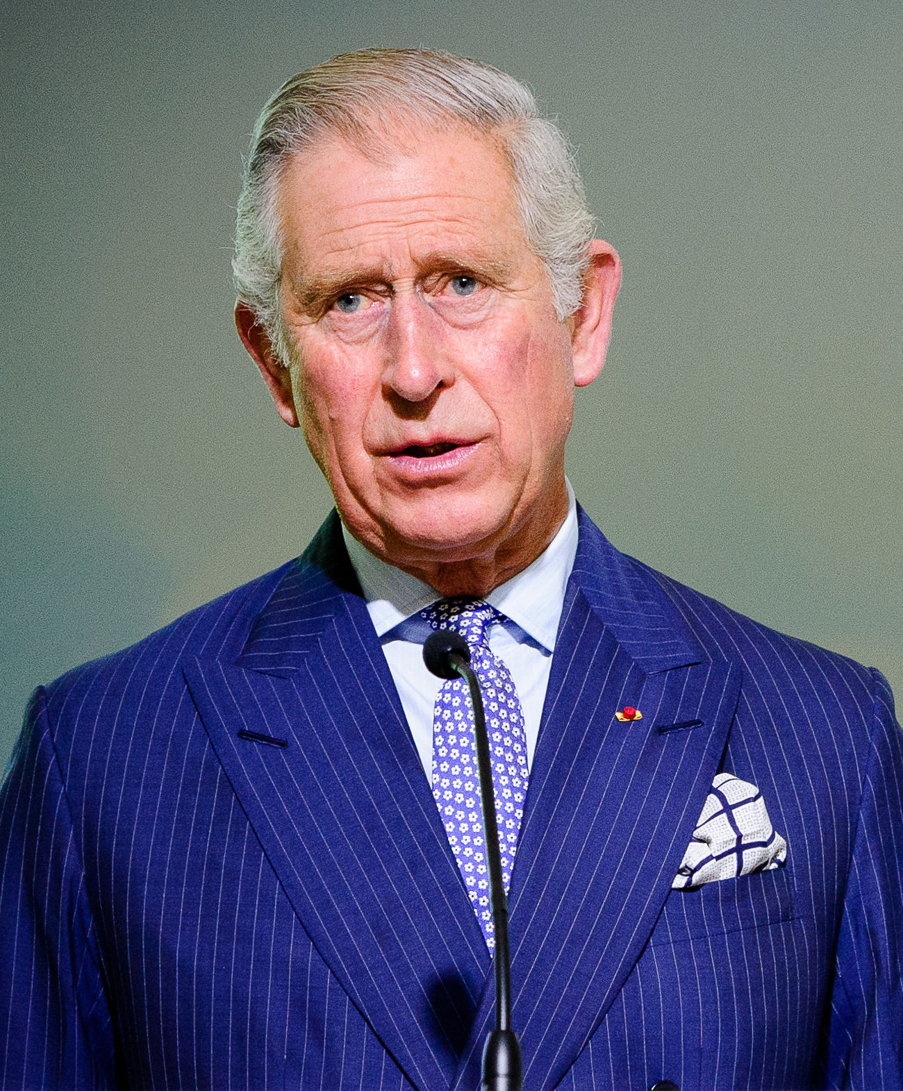 Photo of Charles, Prince of Wales: Son of Queen Elizabeth II of the United Kingdom