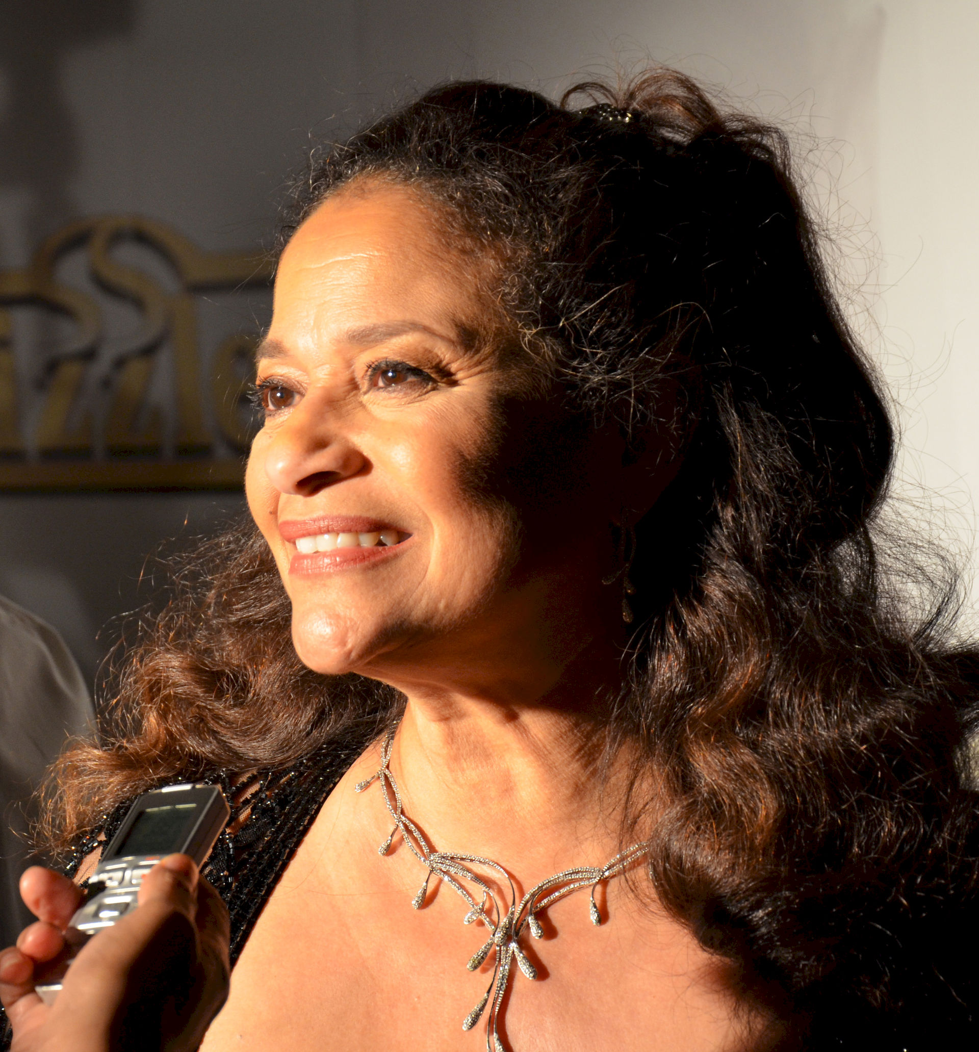 Photo of Debbie Allen: Actress, choreographer, television director, television producer, singer, dancer