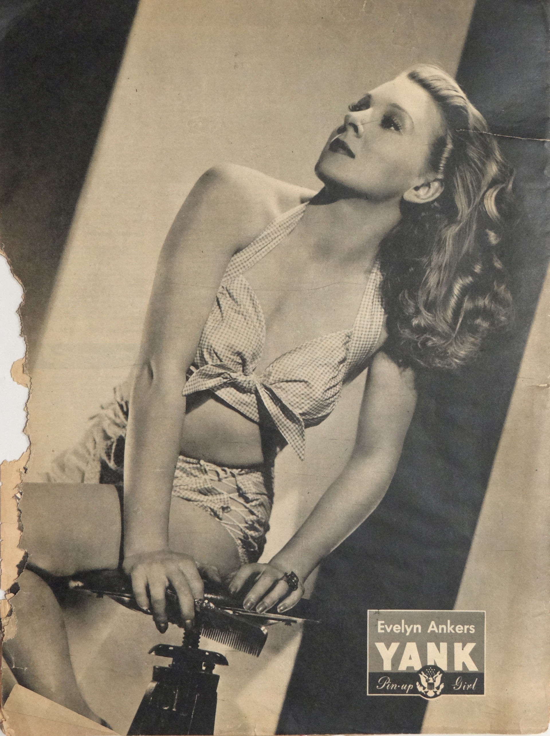 Photo of Evelyn Ankers: Actress
