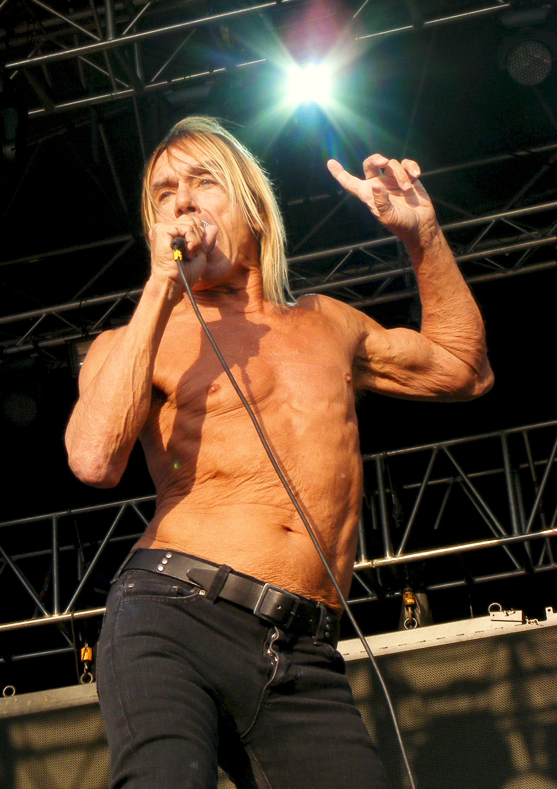 Photo of Iggy Pop: American rock singer-songwriter, musician, and actor