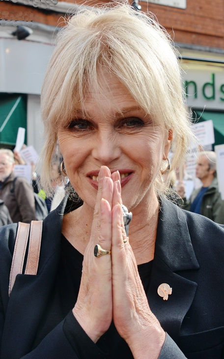 Photo of Joanna Lumley: English actress and former model