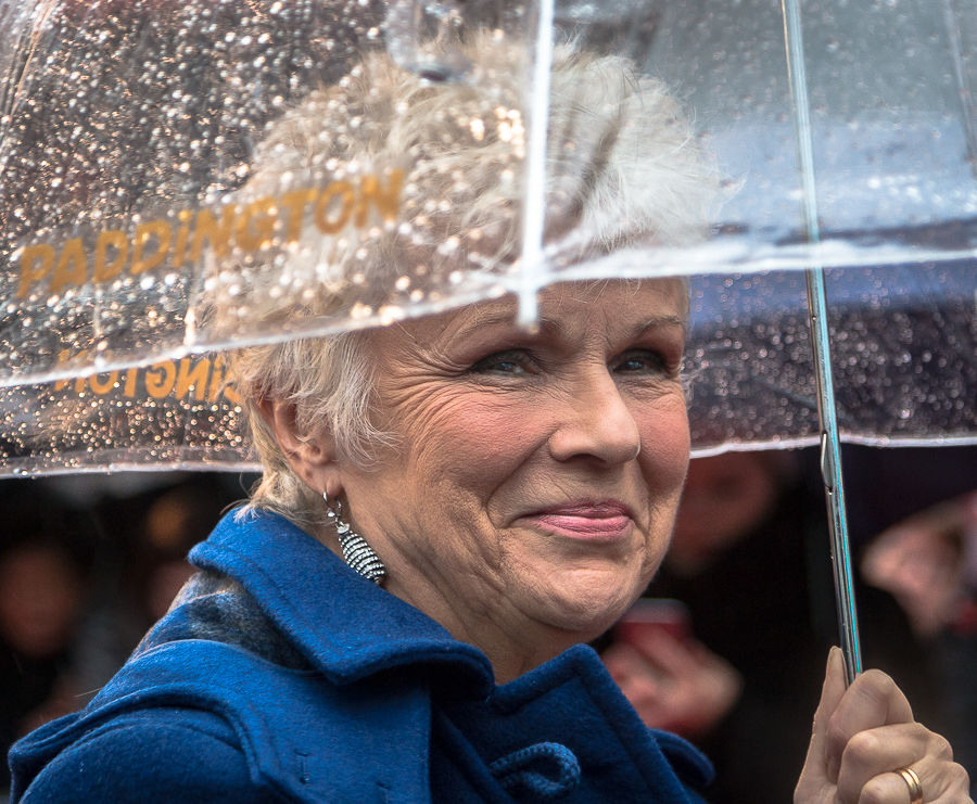 Photo of Julie Walters: Actress