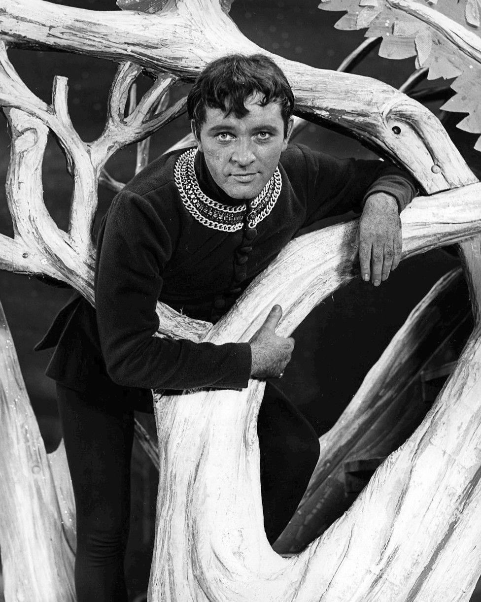 Photo of Richard Burton: Welsh actor