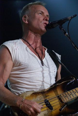 Photo of Sting (musician): English musician