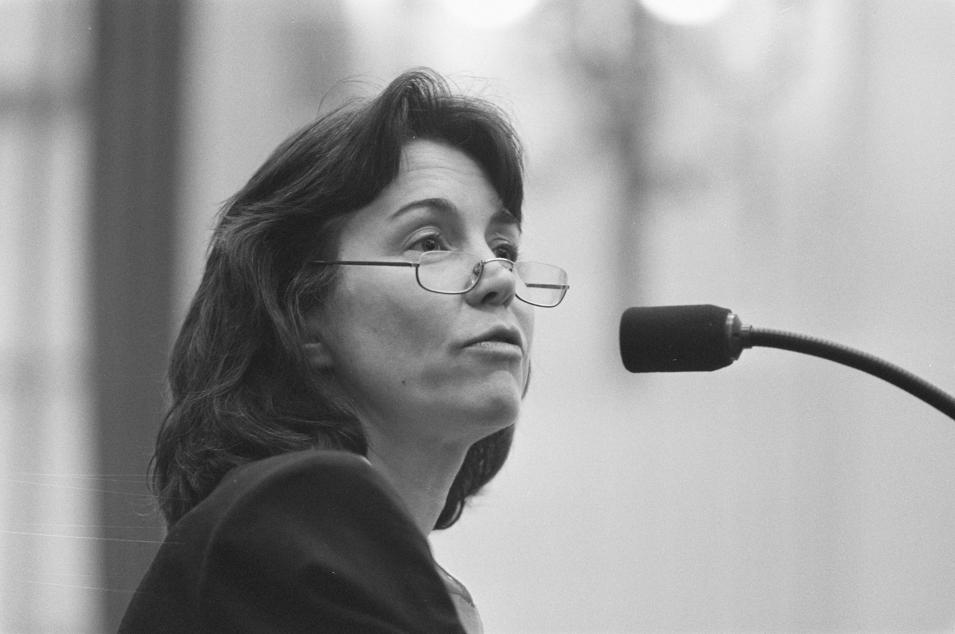 Photo of Tineke Netelenbos: Politician